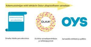 Kuva, jossa kokemustoimijan reitti tehtäviin OYS:ssa: omalta liitolta peruskoulutus, OLKAlta sairaalaperehdytys ja tehtäväpyynnöt, sairaalta tehtäviä ja palkkio
